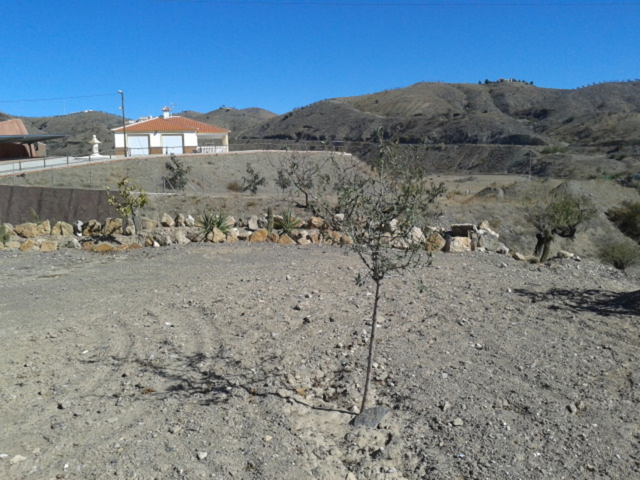 0 Bedroom Land Almeria