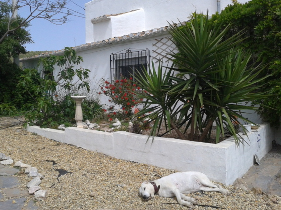 For sale Cortijo 5 Bedroom