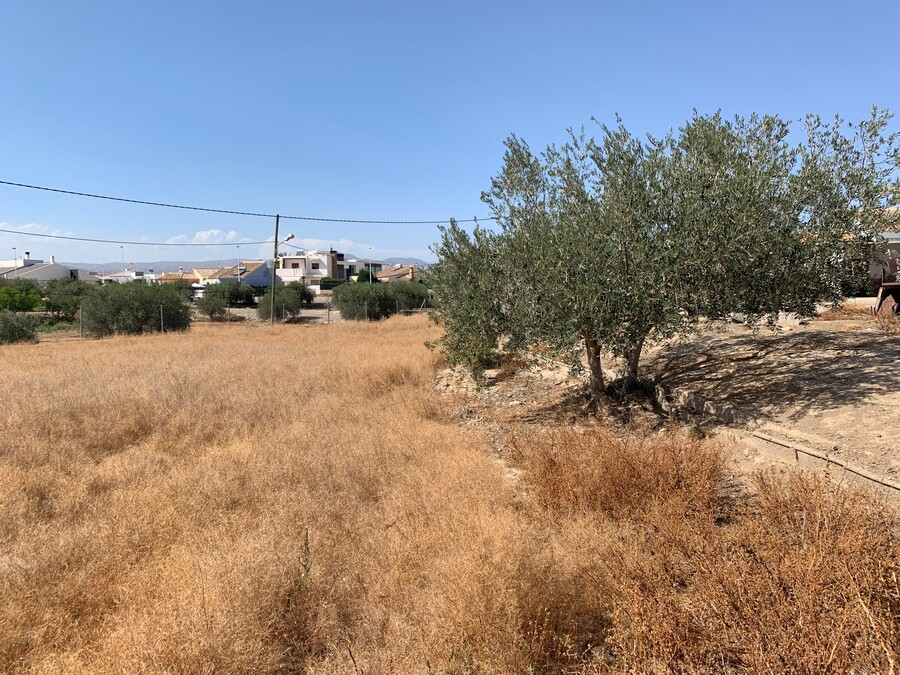 For sale Land Huercal Overa