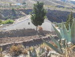 HO017: Cortijo for sale in Huercal Overa